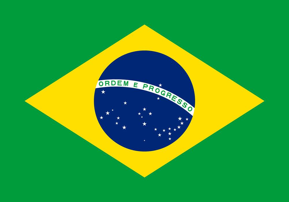 brazil flag medium